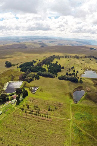 dullstroom-little-troutbeck-01