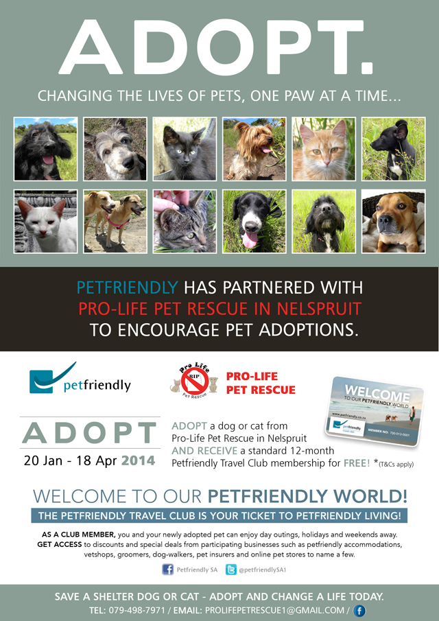 Pro-Life-Petfriendly-Adopt-Poster
