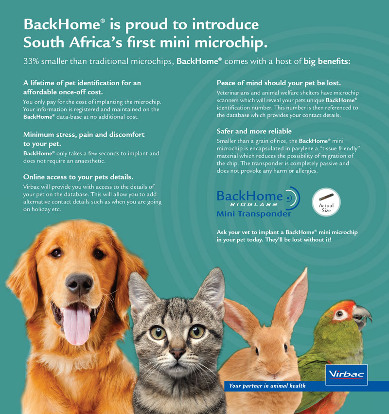 bring-your-pets-backhomer-where-they-belong-02